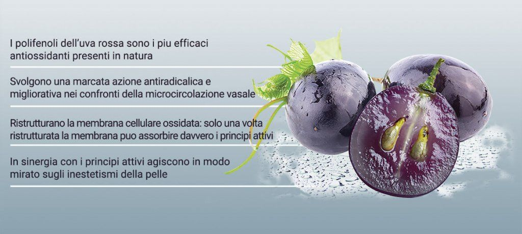 ingredienti uva barolo